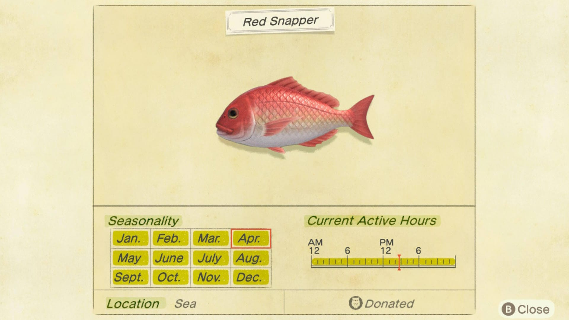 Animal Crossing NH Critterpedia Fish