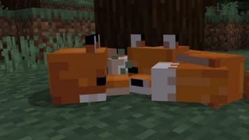Minecraft Bedrock Update Foxes